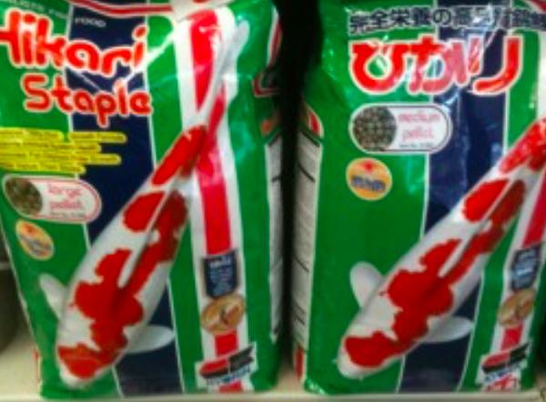 hikari 5 kg staple medium